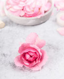 桃红色玫瑰用水在一张灰色大理石桌上滴下 库存照片