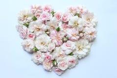 桃红色玫瑰的心脏 免版税库存照片