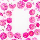桃红色玫瑰花卉框架在白色背景的 平的位置,顶视图 蝴蝶下落花卉花重点模式黄色 库存图片