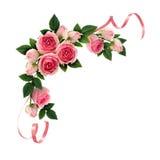 桃红色玫瑰花和丝带壁角安排 免版税库存照片