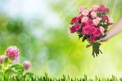 桃红色玫瑰花束与小花和绿色叶子的 春天,假日 免版税库存照片