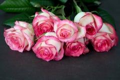 桃红色玫瑰花束,特写镜头视图 黑色看板卡空白色的花卉花的虹膜 库存图片
