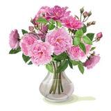 桃红色玫瑰花束  库存照片