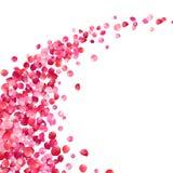 桃红色玫瑰花瓣漩涡 皇族释放例证