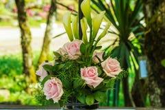 桃红色玫瑰花瓶 免版税库存图片