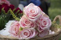 桃红色玫瑰花 库存照片