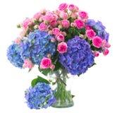 桃红色玫瑰诗句和蓝色霍滕西亚花关闭  库存图片