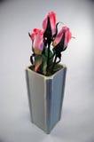 桃红色玫瑰,灰色陶瓷花瓶 库存照片