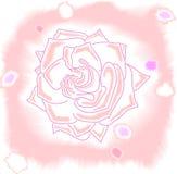 桃红色玫瑰水彩纹理 免版税库存图片
