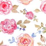 桃红色玫瑰 手画的水彩,葡萄酒例证 免版税库存照片