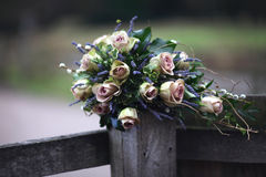 桃红色玫瑰&淡紫色花束 库存照片