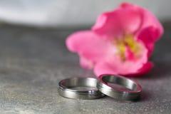 桃红色环形玫瑰色婚礼 库存图片
