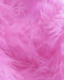 桃红色用羽毛装饰背景-储蓄照片 免版税库存照片