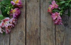 桃红色百合开花边界 生日,母亲` s天,华伦泰` s天、3月8日,喜帖或邀请 装饰花卉框架 f 免版税库存照片