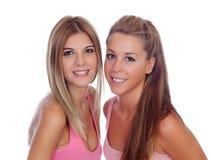 桃红色的两个美丽的朋友 库存照片