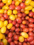 桃红色的蕃茄黄色 库存照片