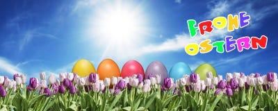 桃红色的鸡蛋和在草原蓝色晴朗的天空的招呼白色的郁金香愉快的东部文本德国人 免版税库存图片