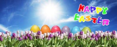 桃红色的鸡蛋和在草原蓝色晴朗的天空的招呼白色的郁金香愉快的东部文本英语 库存图片