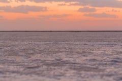 桃红色盐湖亚速号乌克兰 免版税库存图片