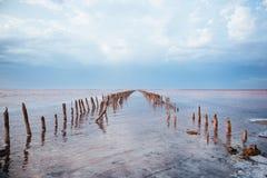 桃红色盐湖全景在乌克兰 免版税库存照片
