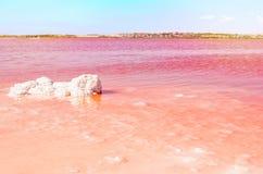 桃红色盐湖和盐团在水中 托雷维耶哈,西班牙 免版税库存照片