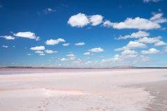 桃红色盐湖在南澳大利亚 库存照片