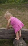 桃红色礼服的女孩在日志 库存图片