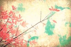 桃红色秋天叶子 库存图片