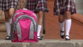 桃红色穿着裙子的学校背包和女孩 库存图片