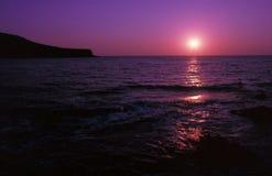 桃红色紫色 库存图片