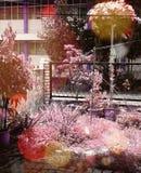 桃红色紫色 图库摄影