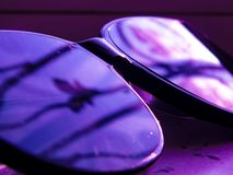 桃红色紫色slylish太阳镜和美丽 免版税库存图片