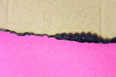 桃红色纸和被烧的纸板 图库摄影