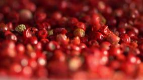 桃红色胡椒豌豆 关闭 120 fps 股票视频