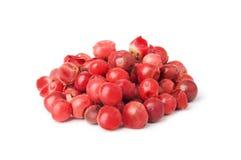桃红色胡椒 库存照片