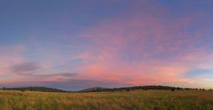 桃红色自由州天空 库存照片