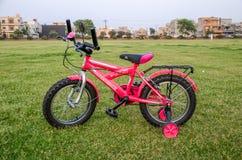 桃红色自行车 库存图片