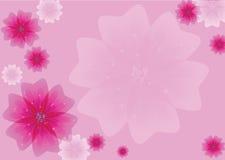 桃红色花。 向量例证