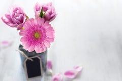 桃红色花为母亲节 免版税库存照片