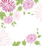 桃红色花和叶子背景  免版税库存照片