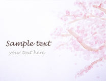 桃红色花和文本 库存图片