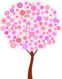 桃红色花和板簧树例证 库存图片