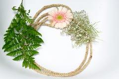桃红色花和绿色叶子 免版税库存图片