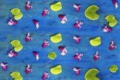 桃红色花和绿色的样式在蓝色年迈的被构造的木背景离开 库存照片