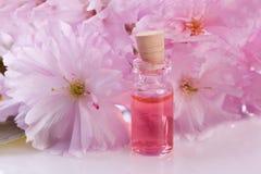 桃红色花和芳香精华 免版税库存照片