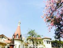桃红色花在宫殿 免版税库存图片