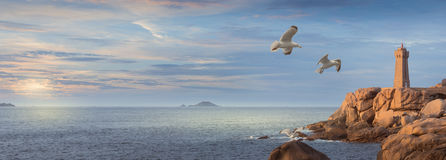 桃红色花岗岩海岸在布里坦尼,法国的北部Ouest 免版税库存照片