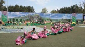 桃红色花服装舞蹈的女孩在世界大学生运动会 股票录像