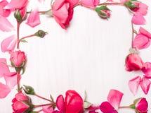 桃红色花框架在白色背景的 平的位置,顶视图 免版税库存照片