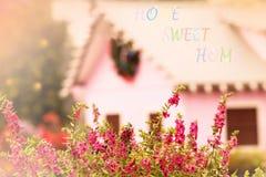桃红色花的布什在庭院里 库存照片